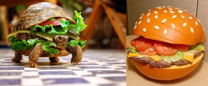 hamburguesa tortuga